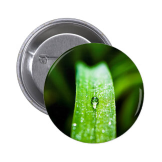 Morning Dew Water Droplet Pinback Button