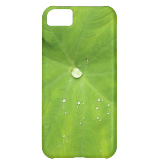 Morning dewdrop cover for iPhone 5C