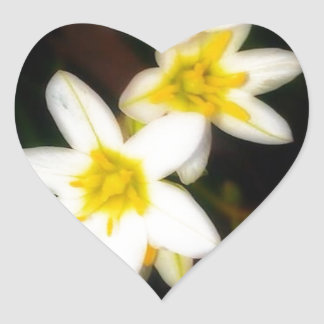 Morning Flowers Photograph by Erika Elmore Heart Sticker