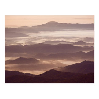 Morning fog in the southern Appalachian Postcard