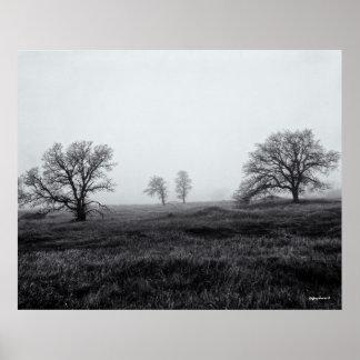 Morning Fog Paradise California 1985 Print