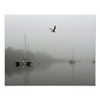 Morning Fog with Sailboats Photo Print