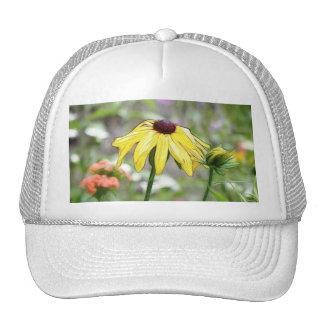 Morning Garden - Black Eyed Susan Hat