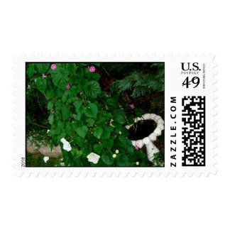 Morning Garden - Moonflowers & Morning Glories Stamp