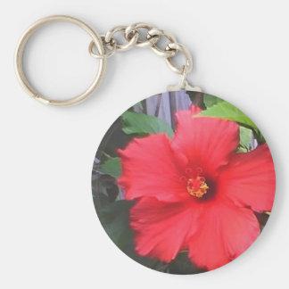 morning glories basic round button keychain
