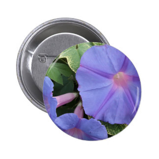 Morning Glories Button