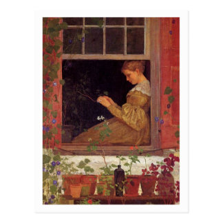 Morning Glories by Winslow Homer Postcard