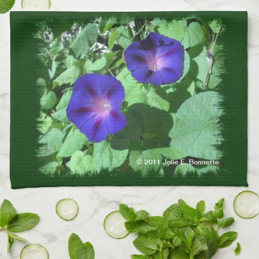 Morning Glories Kitchen Towels