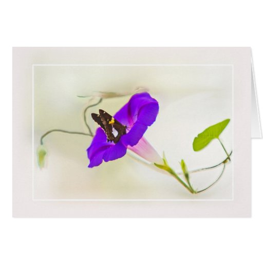 Morning Glory and Butterfly Stationery Note Card