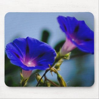 Morning Glory and meaning Mousepads