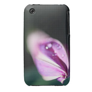 Morning Glory Bud iPhone 3 Cases