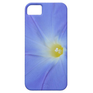 Morning Glory closeup! iPhone SE/5/5s Case