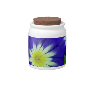 Morning Glory Flower Cookie Jar Candy Jar