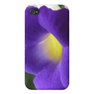 Morning Glory Flower iPhone 4 Case