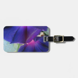 Morning Glory Flower Luggage Tag