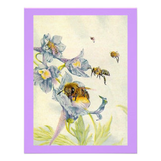 Morning Glory Flowers Bees Birthday Party INVITE