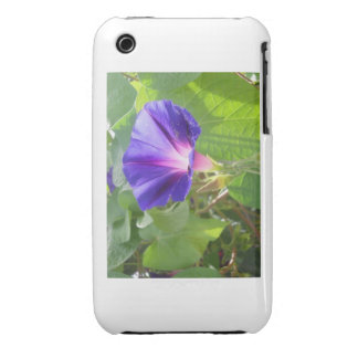 Morning Glory iTouch Case