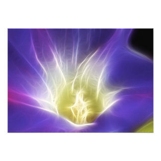 Morning Glory Photo Fractal Announcement