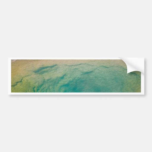 Morning Glory Pool Bumper Stickers