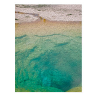 Morning Glory Pool Postcard