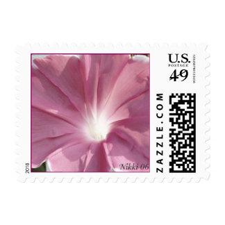 Morning Glory Postage Stamp