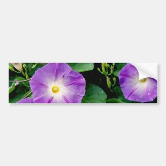 Morning Glory - Purple Flowers Green Leaves Bumper Sticker