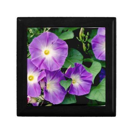 Morning Glory - Purple Flowers Green Leaves Jewelry Box