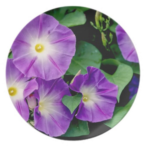 Morning Glory - Purple Flowers Green Leaves Melamine Plate