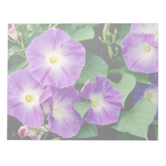 Morning Glory - Purple Flowers Green Leaves Memo Note Pads