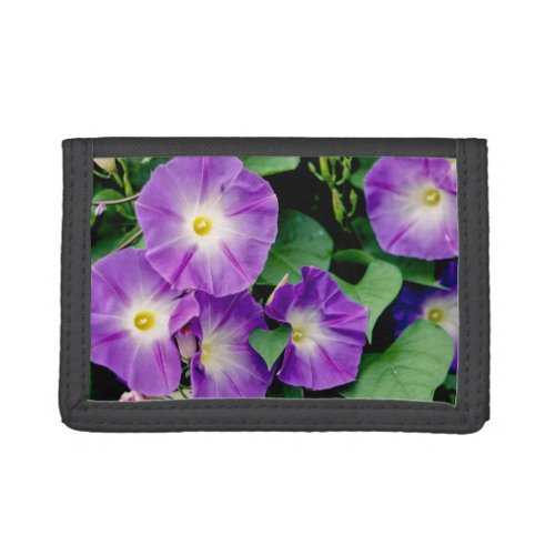 Morning Glory, Purple Flowers Green Leaves Trifold Wallet