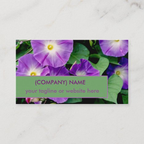 Morning Glory, Purple Trumpet Flowers Green Leaves Business Card
