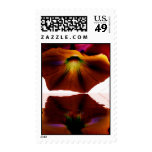 Morning Glory Reflections Postage Stamps