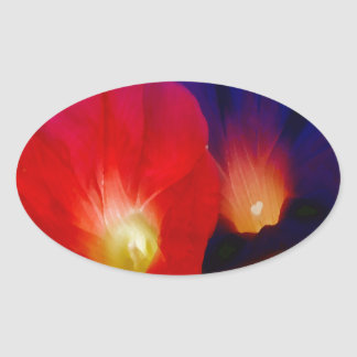 Morning Glory Spider-PhotoMagic Oval Sticker