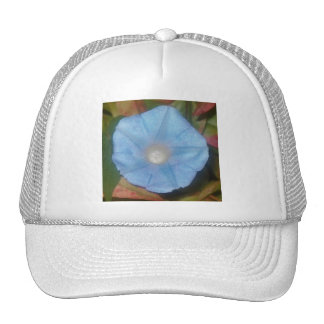 Morning Glory Star Trucker Hat