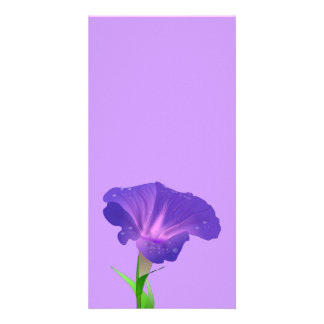 morning_glory_Vector_Clipart flowers Card