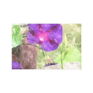 Morning Glory Watercolor Canvas