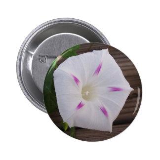 Morning Glory White Pinback Button