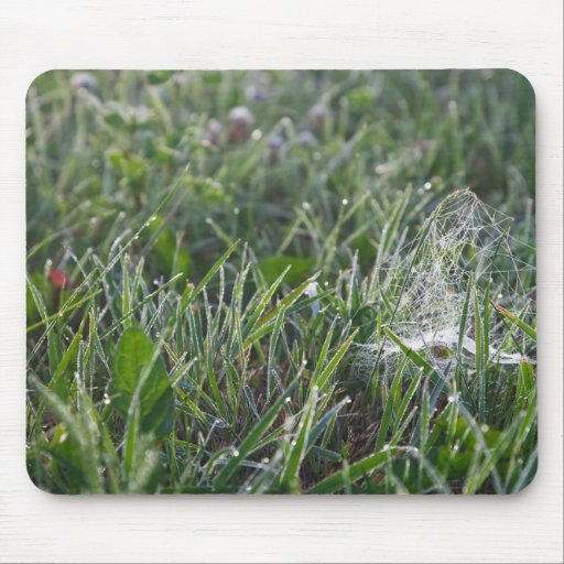 Morning grass mouse pad