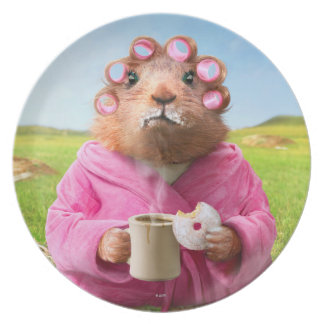 Morning Groundhog with Breakfast Donut and Coffee Melamine Plate
