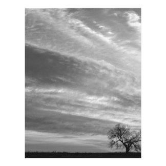 Morning Has Broken Three Trees BW Letterhead