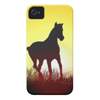 morning horses iphone 4 case-mate cases