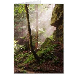 Morning Light Blank Greeting Card