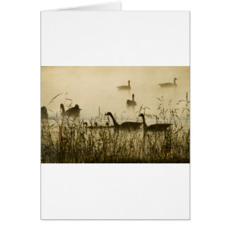 Morning Light Canadian Geese Pond Silhouette Card