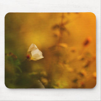 Morning light mouse pad