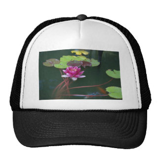 Morning Lily Trucker Hat