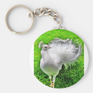 morning love birds basic round button keychain