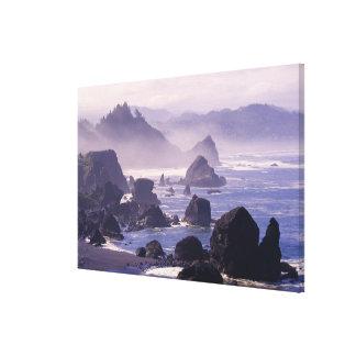 Morning mist along Oregon coast near Nesika, Canvas Print