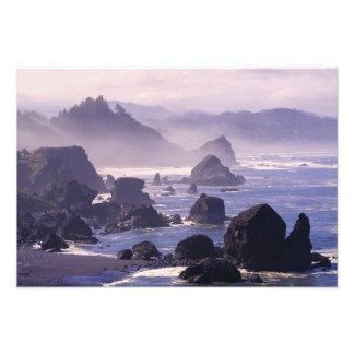 Morning mist along Oregon coast near Nesika, Photo Print