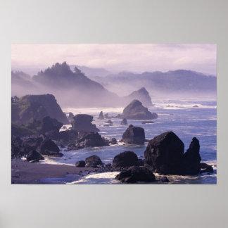 Morning mist along Oregon coast near Nesika, Poster