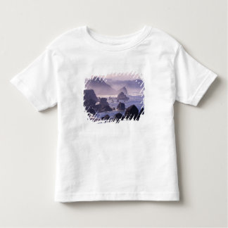 Morning mist along Oregon coast near Nesika, T-shirt